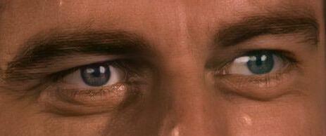 Arturo Toledano Zorro oczy